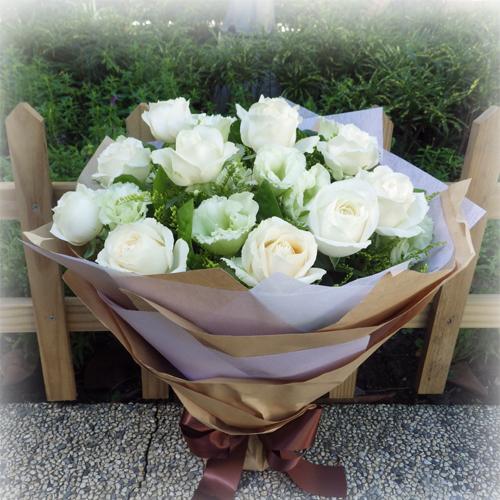 幸褔白玫瑰