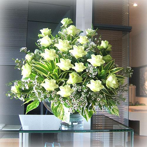 白玫瑰花豪華盆花